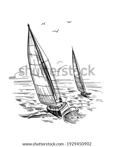 Landscape with yachts and the sea. Outline vector illustration. Yachting . Black on transparent backgroun Stock photo ©