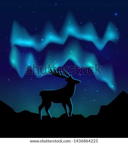 landscapes northern lights in