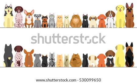 Cat Adoption Database