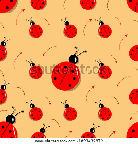 large and small ladybugs on an