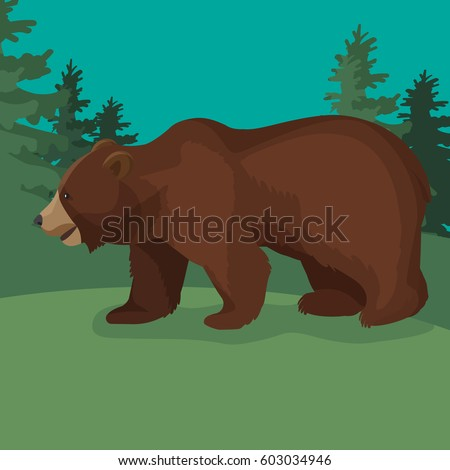 large brown bear side view