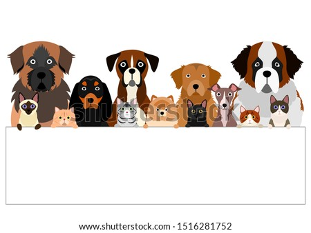 large group of various breeds