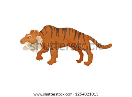 Large saber-tooth tiger or smilodon, side view. Prehistoric mammal. Wild animal from ice age. Flat vector design