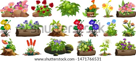 Large set of colorful flowers on rocks and wood illustration