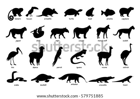 large set of silhouettes of