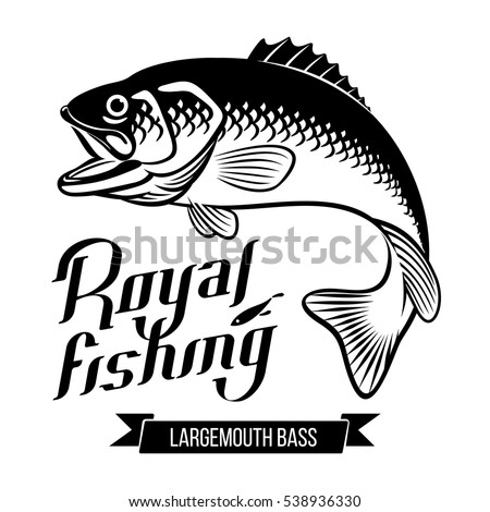 Largemouth Bass with open mouth. Fish vector illustration. Royal fishing calligraphy