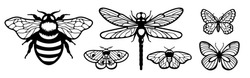 Laser cut template. Set of insects: butterfly, dragonfly and bee. Silhouettes flying insects icons. Collection of black butterflies isolated. Wood carving vector for wedding invitation, greeting card.