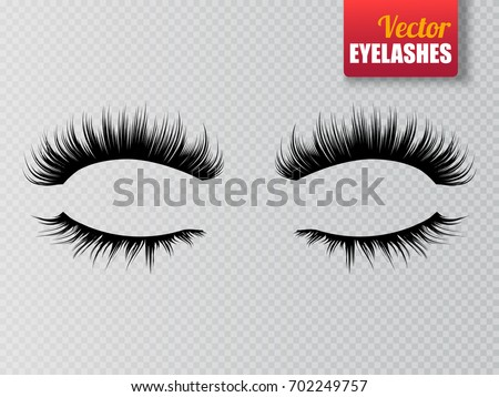 lashes isolated on transparent
