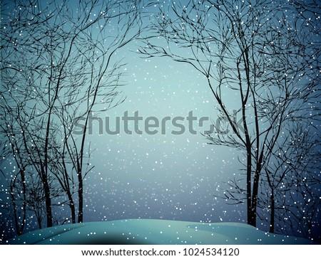 last winter snow  snowy weather