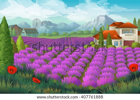 lavender flowers field nature