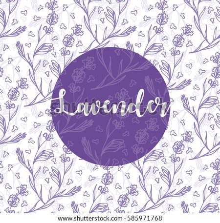 lavender flowers illustration