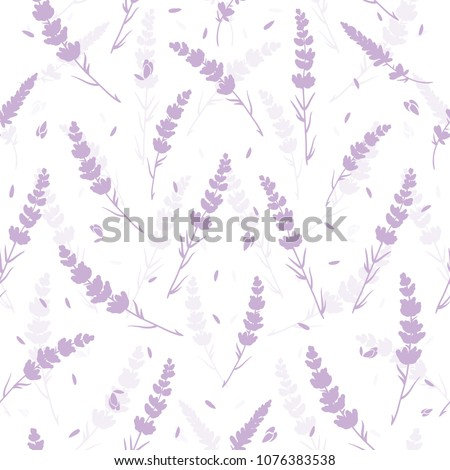 lavender flowers light purple