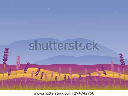 lavender landscape at sunset
