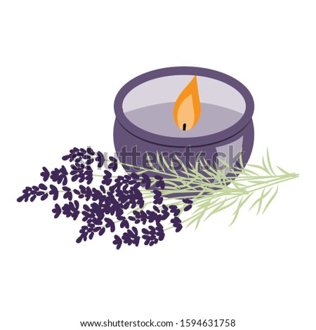 Lavender plant and aromatic candle, vector