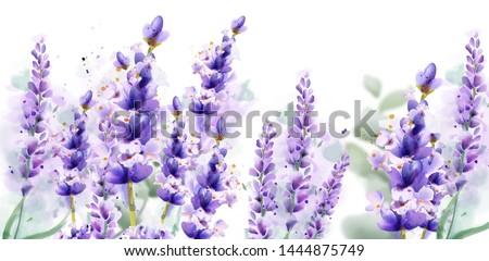 lavender watercolor background