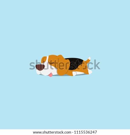 lazy dog  cute beagle puppy