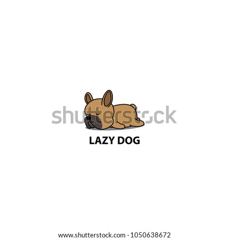 lazy dog  cute brown french