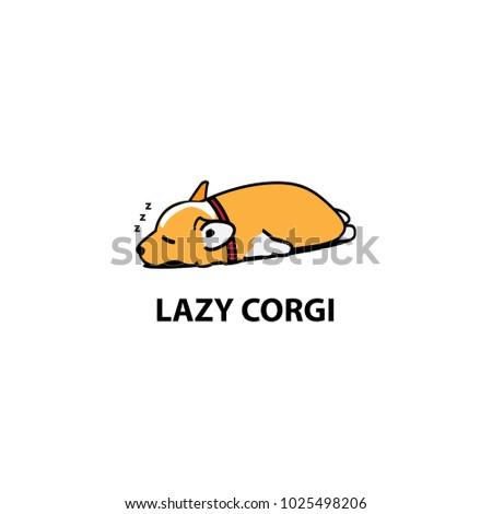 lazy dog  cute corgi puppy