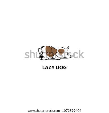 lazy dog  cute jack russell