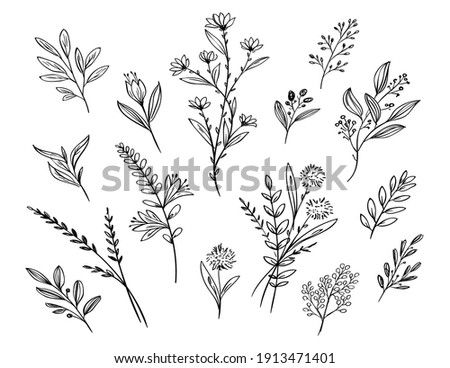 leaf and flower floral ornament template