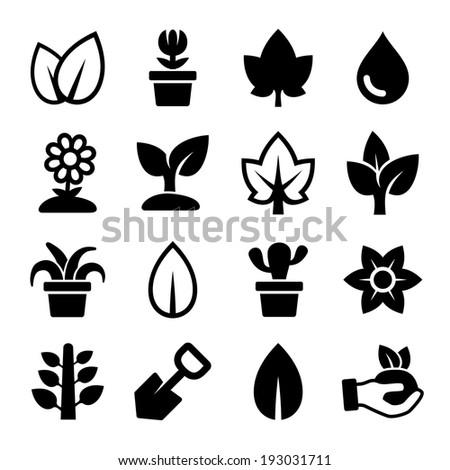 leaf and plants icons set