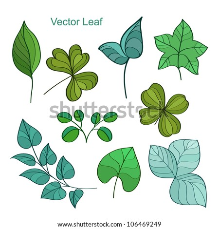 Leaf collection isolated - vector illustration