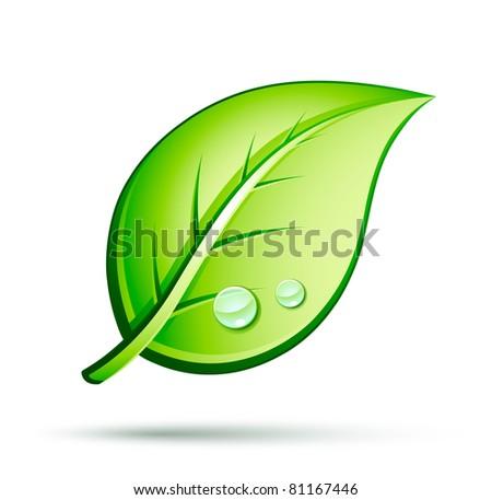 Leaf Icon Leaf Icon