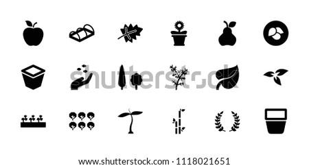 leaf icon collection of 18