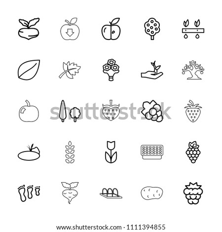 Leaf icon. collection of 25 leaf outline icons such as mulberry, grape, beet, tree, grape, flower, family footprint, apple, plant. editable leaf icons for web and mobile.