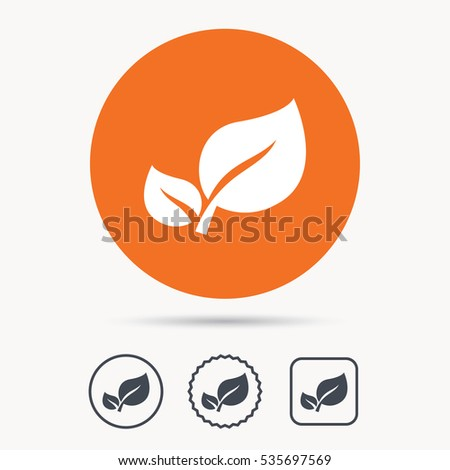 Leaf icon. Fresh organic product symbol. Orange circle button with web icon. Star and square design. Vector