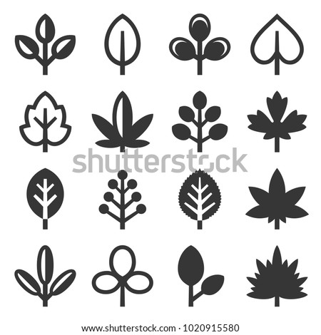 Leaf Icons Set on White Background. Vector