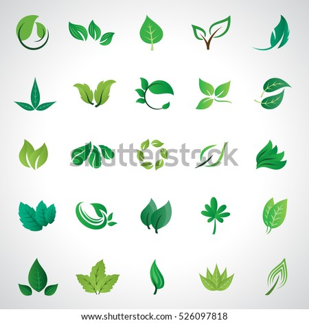 Leaf icons set, vector illustration. Collection of green leaves. Different shapes in modern flat style. Simple cartoon flat style. Green leaves design elements