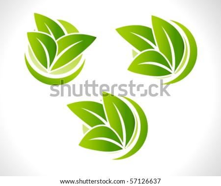 leaf illustration set