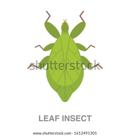 leaf insect flat icon on white