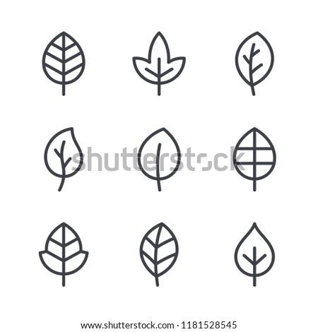 Leaf line icons, vector leaves logo design