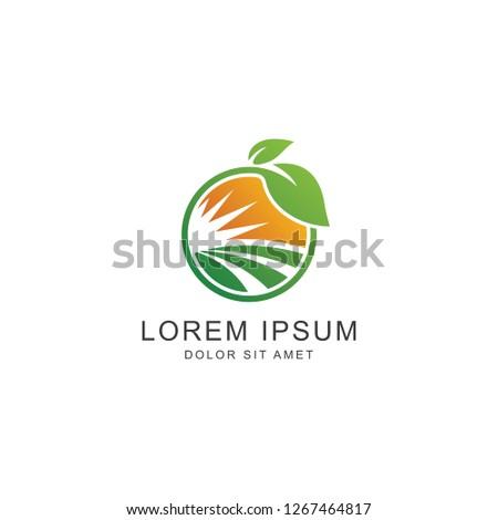 Leaf Logo, icon vector logo template