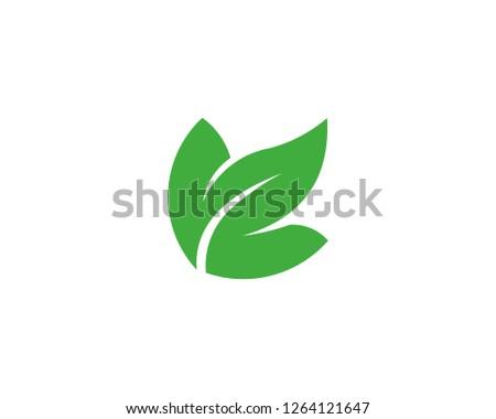 leaf logo stock vector