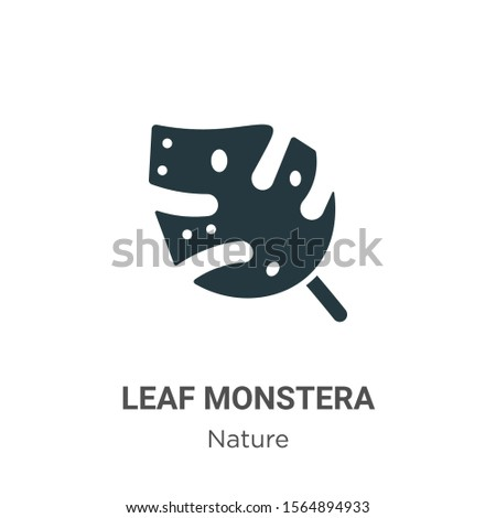 Leaf monstera vector icon on white background. Flat vector leaf monstera icon symbol sign from modern nature collection for mobile concept and web apps design.