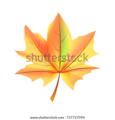 leaf of orange and green color