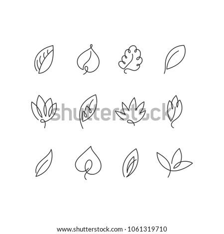 Leaf set black and white, linear shape spontaneous creative lines