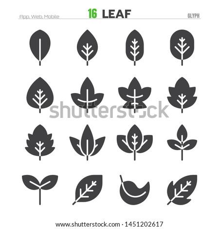 Leaf Solid Glyph Icon Set Illustration EPS 10.