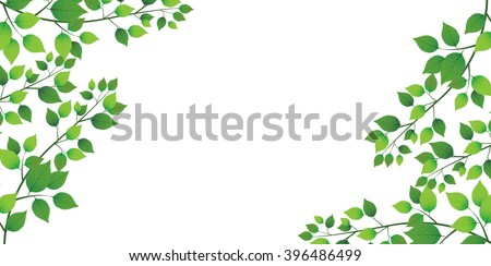 leaf tree fresh green background