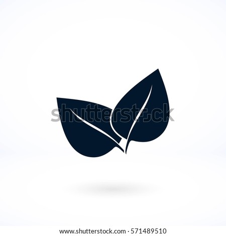leaf vector icon, flat design best vector icon