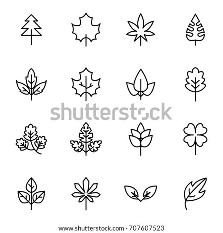 Leaf vector line icons, minimal pictogram design