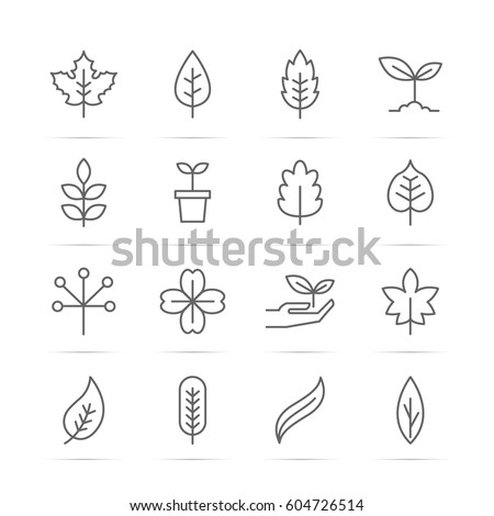 leaf vector line icons, minimal pictogram design, editable stroke for any resolution, nature ecology concept