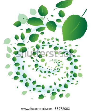 Leaf Whirlwind