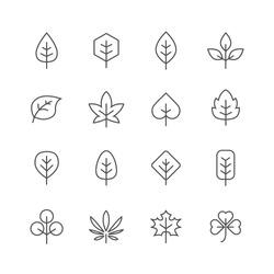 Leafes lines icons set