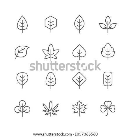 Leafes lines icons set