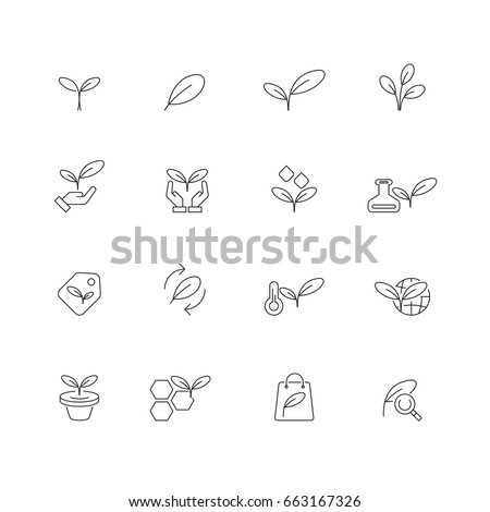 Leafs and Plants icons set,vector
