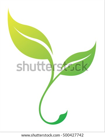 Leave. Vector green spring stylized leaf silhouette. Season tree leaf isolated on white background. Eco sign, nature label. Decorative element for medical, ecological brands.